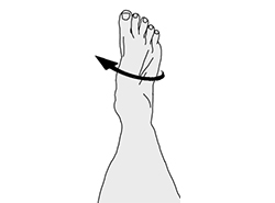 Sample treatment guides and handouts from the pt toolkit turn foot out fandeluxe Choice Image
